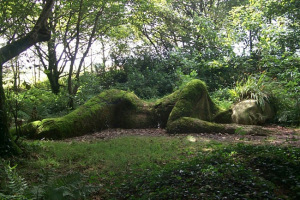 The-Lost-Gardens-of-Heligan[1]