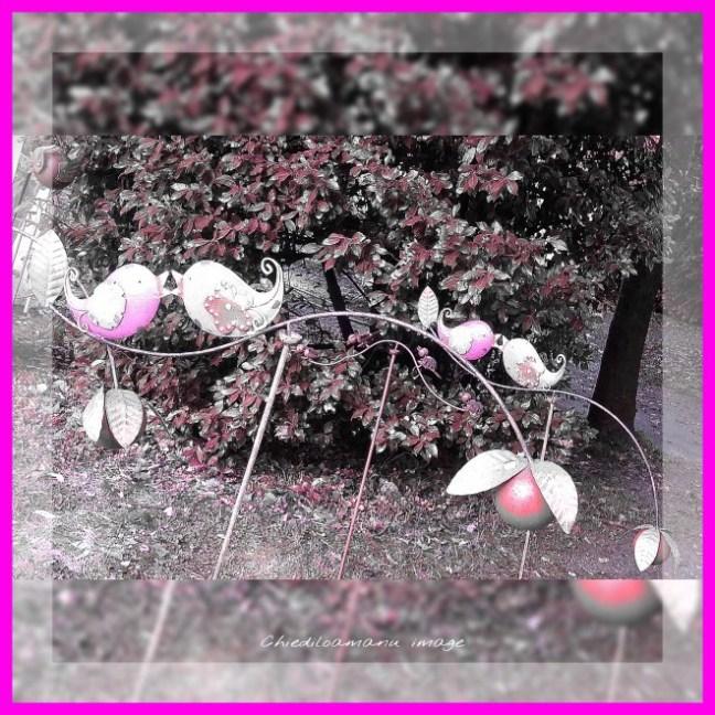 PicsArt_1444995001899
