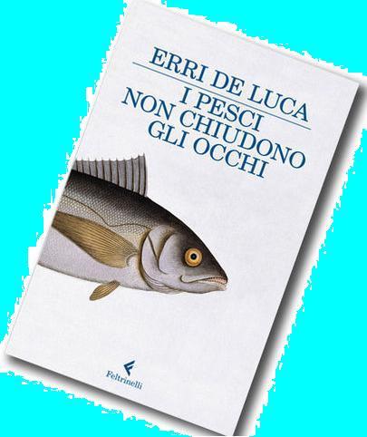 L'ULTIMO LIBRO CHE HO LETTO di Erri De Luca- 2013