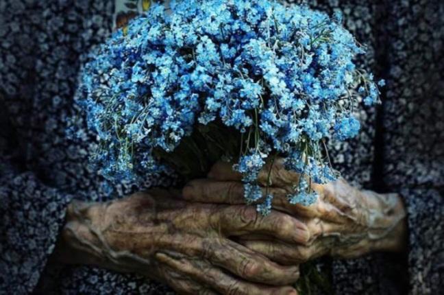 fiori di cielo e mani antiche