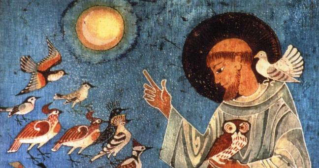 San Francesco Don B