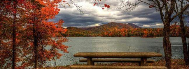 AutumnAwesomeNatureWord